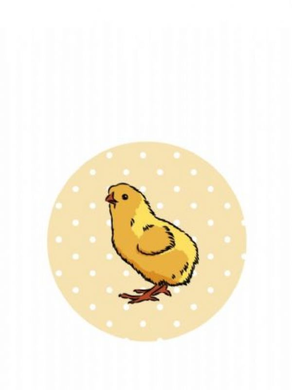 """""""Buy Lid Topper 40mm Little Chick from Love Jars"""""""